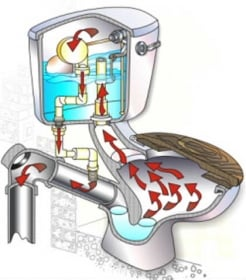 toilet-friend-1310302081
